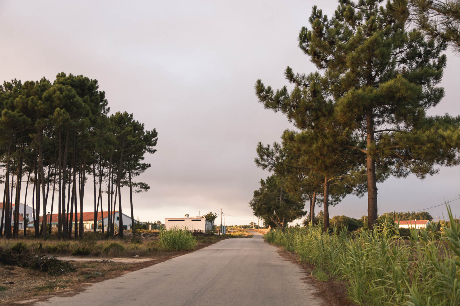 6ª Etapa no Caminho Histórico, de Odeceixe à Arrifana_Num Postal