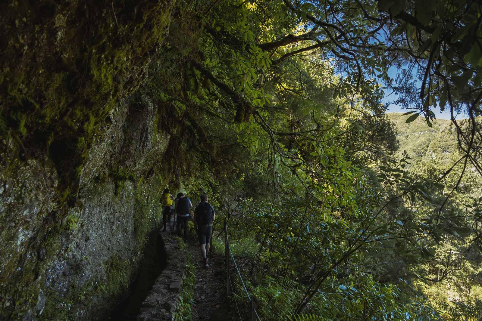 Madeira, a pérola do Atlântico-10