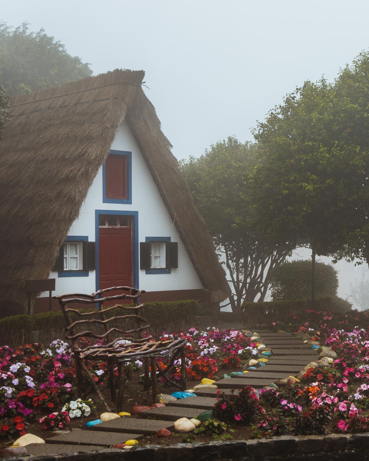 Madeira, a pérola do Atlântico-66