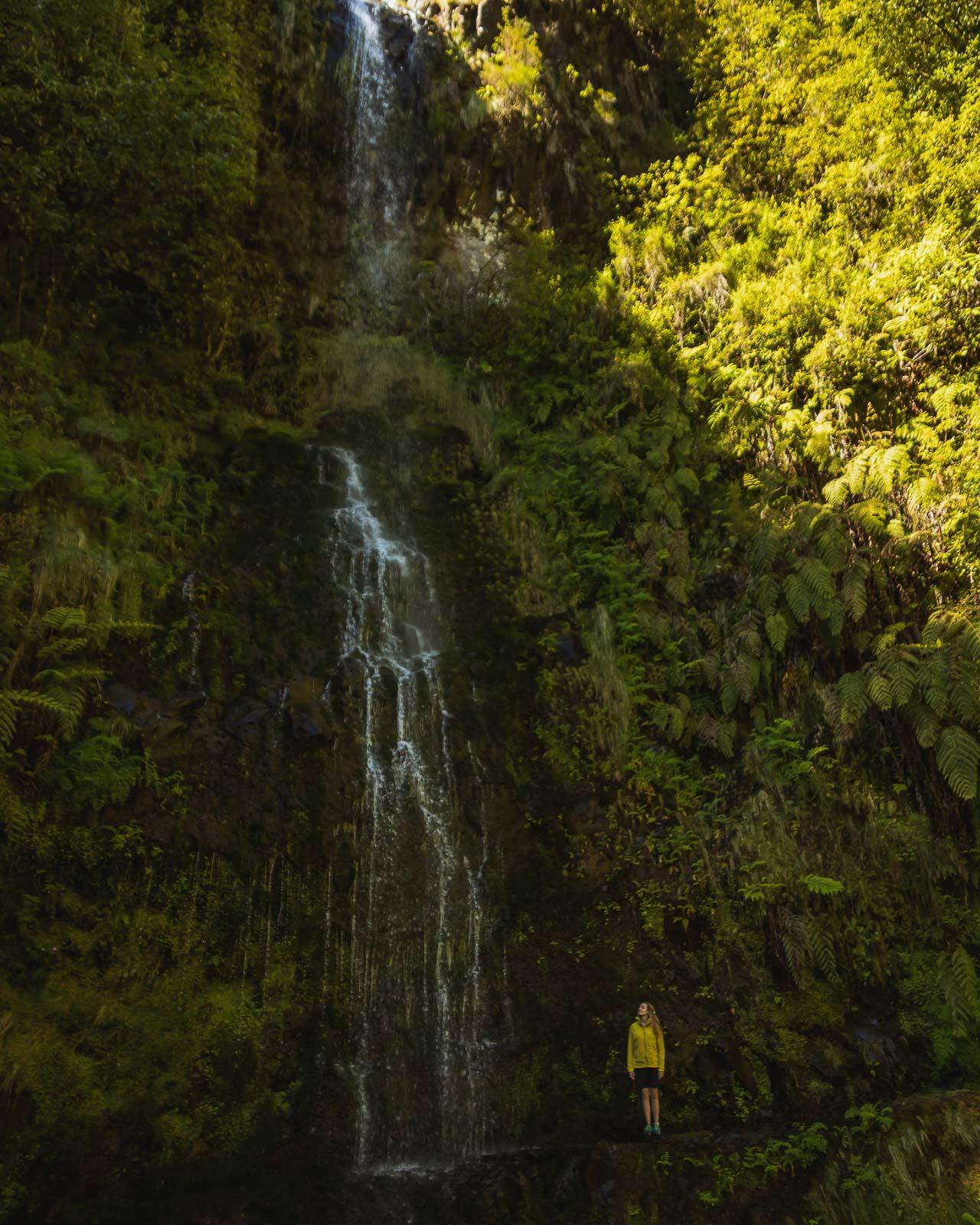 Madeira, a pérola do Atlântico-8